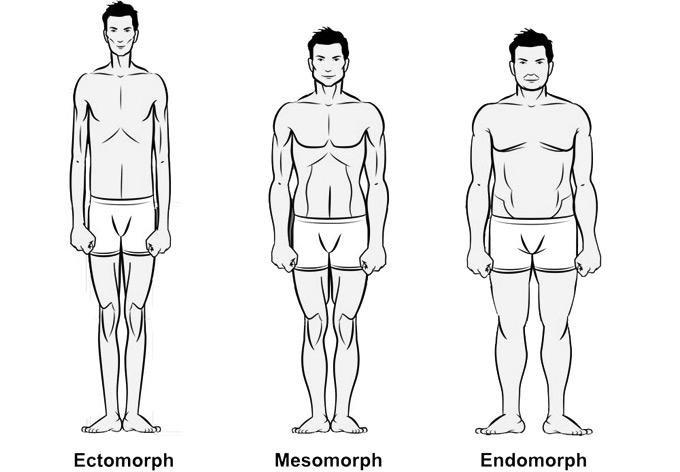 body-types-alpham-iamalpham-aaron-marino